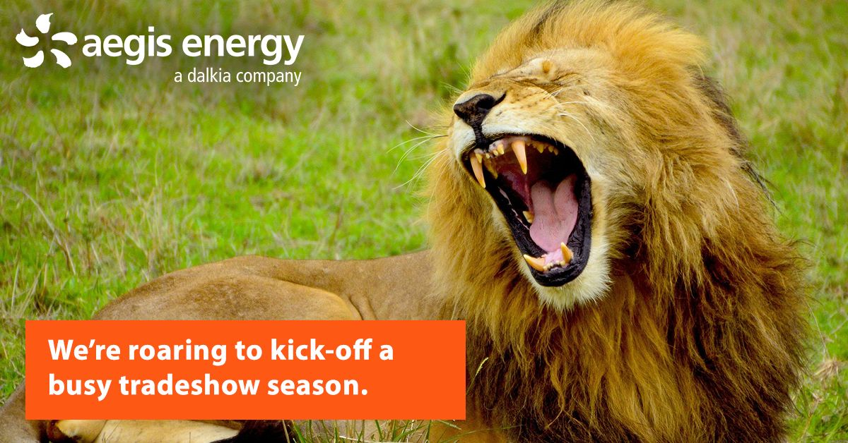 It's tradeshow season! You don't need to play a game of cat and mouse to achieve energy savings and reduced emissions with CHP from Aegis Energy.